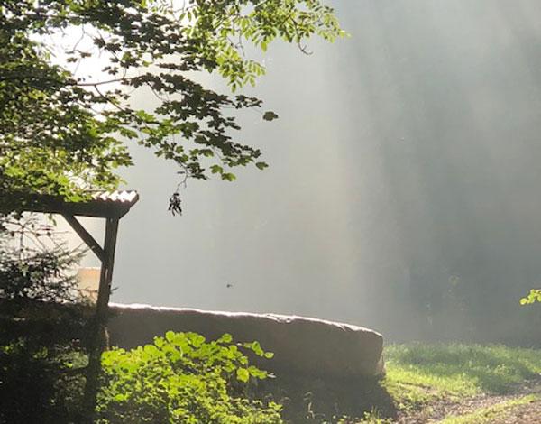 Waldpielgruppe Rösslitram Winkel